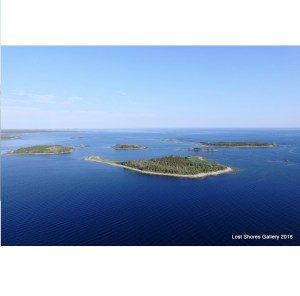 Tor Bay Acadien Society - Lost Shores Photography 2016