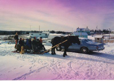 Tor Bay Acadien Society - Sleight-Rides-Festival-de-Tamarin
